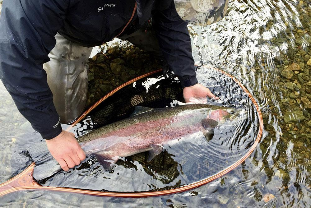 alaska-steelhead-fishing_0008