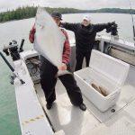 Lodge guest Russ Andrus lands a tasty Alaskan halibut