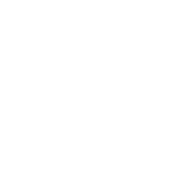 2020 Tripadvisor Traveler's Choice Award